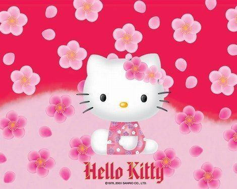 fotos hello kitty hawai